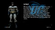 Batman bio2015-05-14 16-57-14
