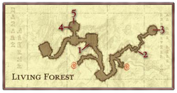 Living Forest Koins