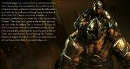 Mk-costumes-alt-ferra-tor-master-servant-1-