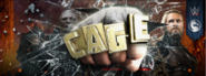Cage Crash in WWE Immortals Game as Facebook Cover Photo
