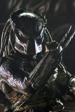 File:Predator01.jpg