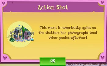 Action Shot Description
