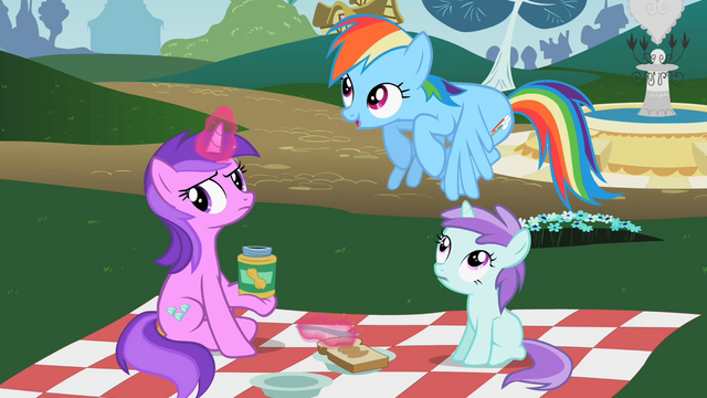 File:Rainbow Dash 'Would you say I was amazing' S2E08.png