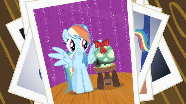 File:Tank's failed photo with Rainbow Dash S2E7.png