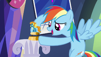Rainbow Dash puts figurine on display S5E3