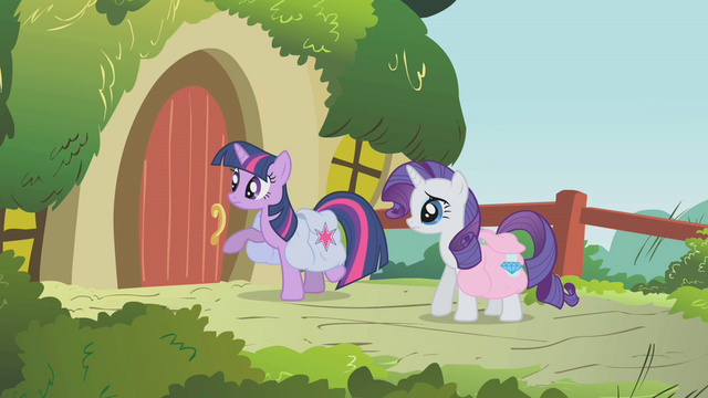 File:Twilight about to knock at Fluttershy's door S01E10.png