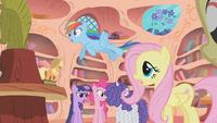Main ponies arguing S1E9