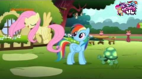 My Little Pony FiM (Dutch) May the best pet win