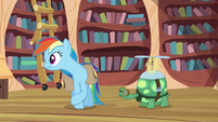 Rainbow Dash looking around S03E11