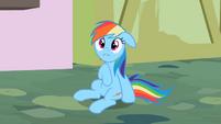 Rainbow Dash oh c'mon S2E8