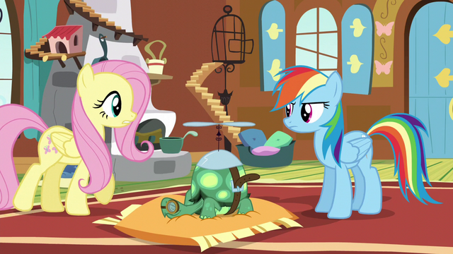 File:Fluttershy walks towards Rainbow Dash S5E5.png
