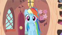 Rainbow Dash see weird S2E20