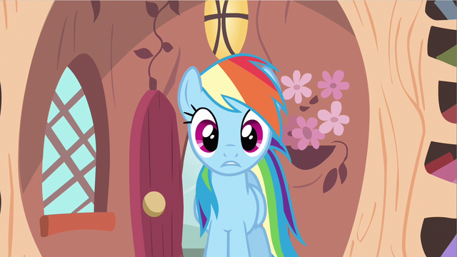 File:Rainbow Dash see weird S2E20.png