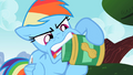 Rainbow Dash tries to open a jar S2E08.png