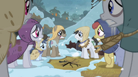 Freezing earth ponies S2E11