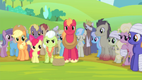 Other ponies see the Apples S4E20