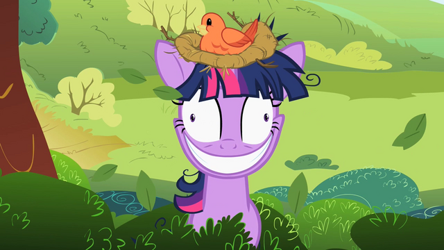 File:Twilight Sparkle with a bird's nest on her head S2E03.png