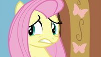 Fluttershy worried about Seabreeze S4E16
