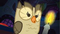 Owlowiscious on Twilight's table S1E24