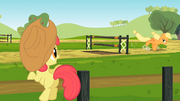 Apple Bloom watches Applejack practice S2E14