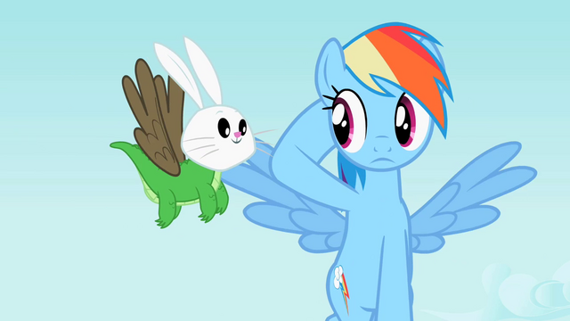 File:Rainbow Dash staring at Angel-Gummy-Owlowiscious S2E7.png