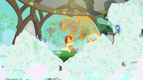 Soap bubbles flood Sunburst's kitchen S6E1