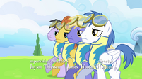 Pegasi walking step by step in unison S3E07