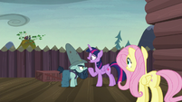 "Twilight ""what do you do when you're not fighting?"" S5E23"