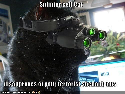 File:Splinter Cell Kitty.jpg