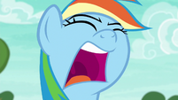 "Rainbow Dash shouts ""come on!"" again S6E18"