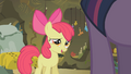 Apple Bloom explains the herbal brew S1E09.png
