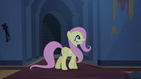 Fluttershy calls out for Angel S4E03