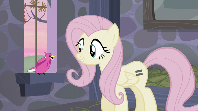 File:The bird communicating with Fluttershy S5E02.png