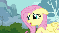 "Fluttershy ""just a little quieter"" S4E16"
