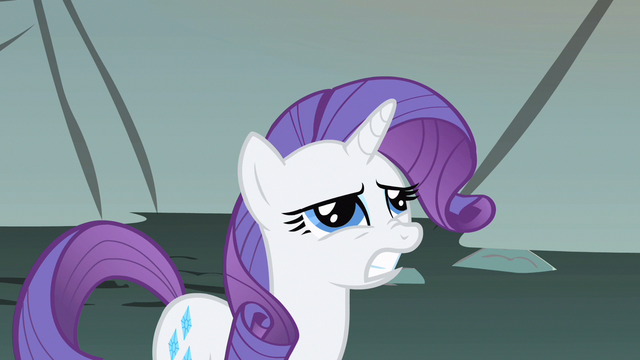 File:Rarity weird question S1E19.png