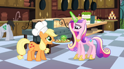 Princess Cadance checking on the catering S02E25