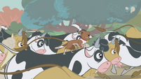 Winona riding a cow S1E04