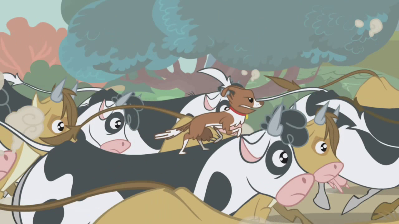 Image Winona Riding A Cow S1e04 Png My Little Pony