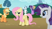 Angel sits on Fluttershy's back S2E07