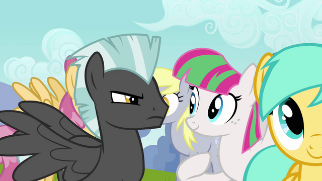 File:Thunderlane glaring at Blossomforth S2E22.png