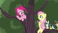 "Pinkie ""There's still other things"" S5E11"