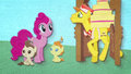 Pinkie Pie observing Mr. Cake BFHHS2.png