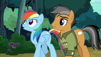 Rainbow Dash and Quibble walking home S6E13