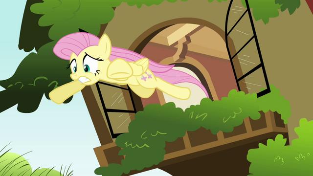 File:Fluttershy window leap S2E21.png