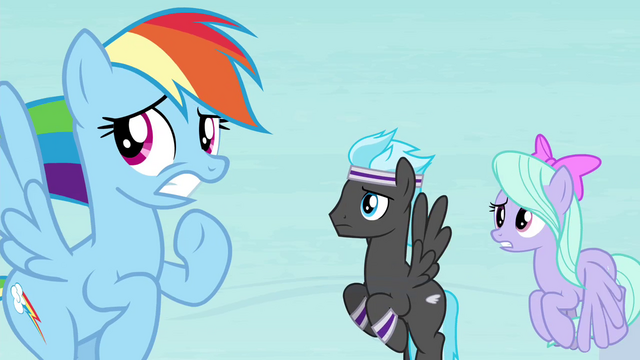 File:Rainbow Dash and Pegasi worried S4E16.png