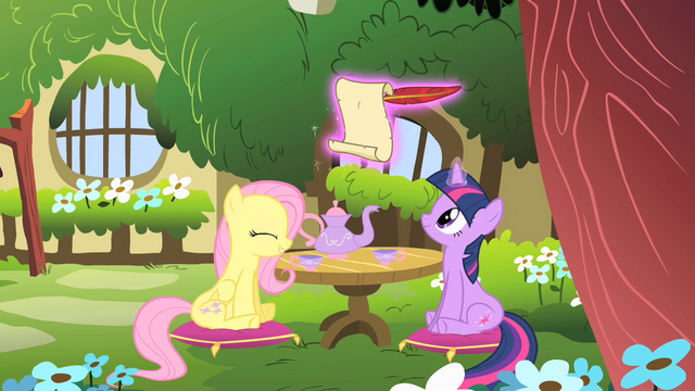 File:Fluttershy and Twilight S01E17.png