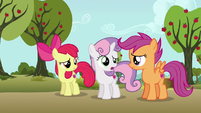 """Sweetie Belle """"maybe that could've been clearer"""" S6E19"""