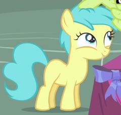 Rainy Feather Earth pony ID S4E13