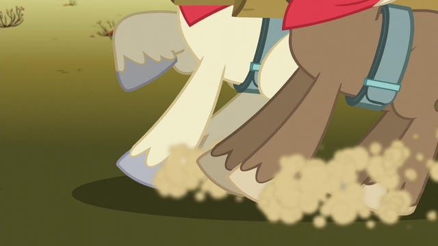 File:Stallions stop S5E11.png