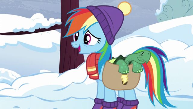 "File:Rainbow Dash ""say goodbye to Tank"" S5E5.png"